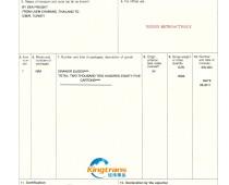 抽屉滑轨泰国转口贸易土耳其FORM A产地证2011